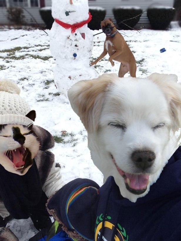casesar-snowman_n
